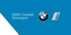 Лого команды Andretti