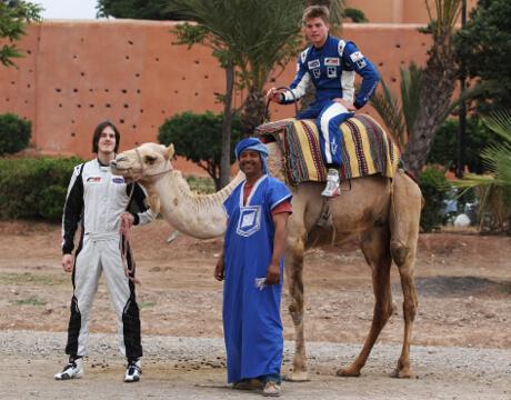 Гонки в Марракеше бывают не только на верблюдах